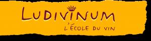 logo ludivinum (1)